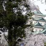 Osaka Castle 1080p