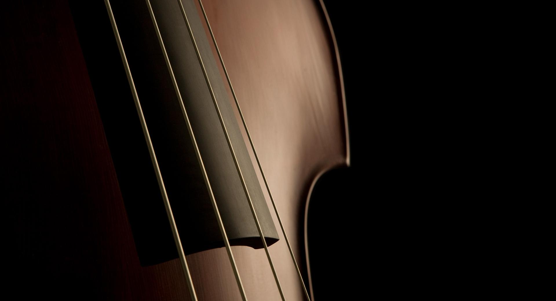 Double Bass Strings wallpapers HD quality