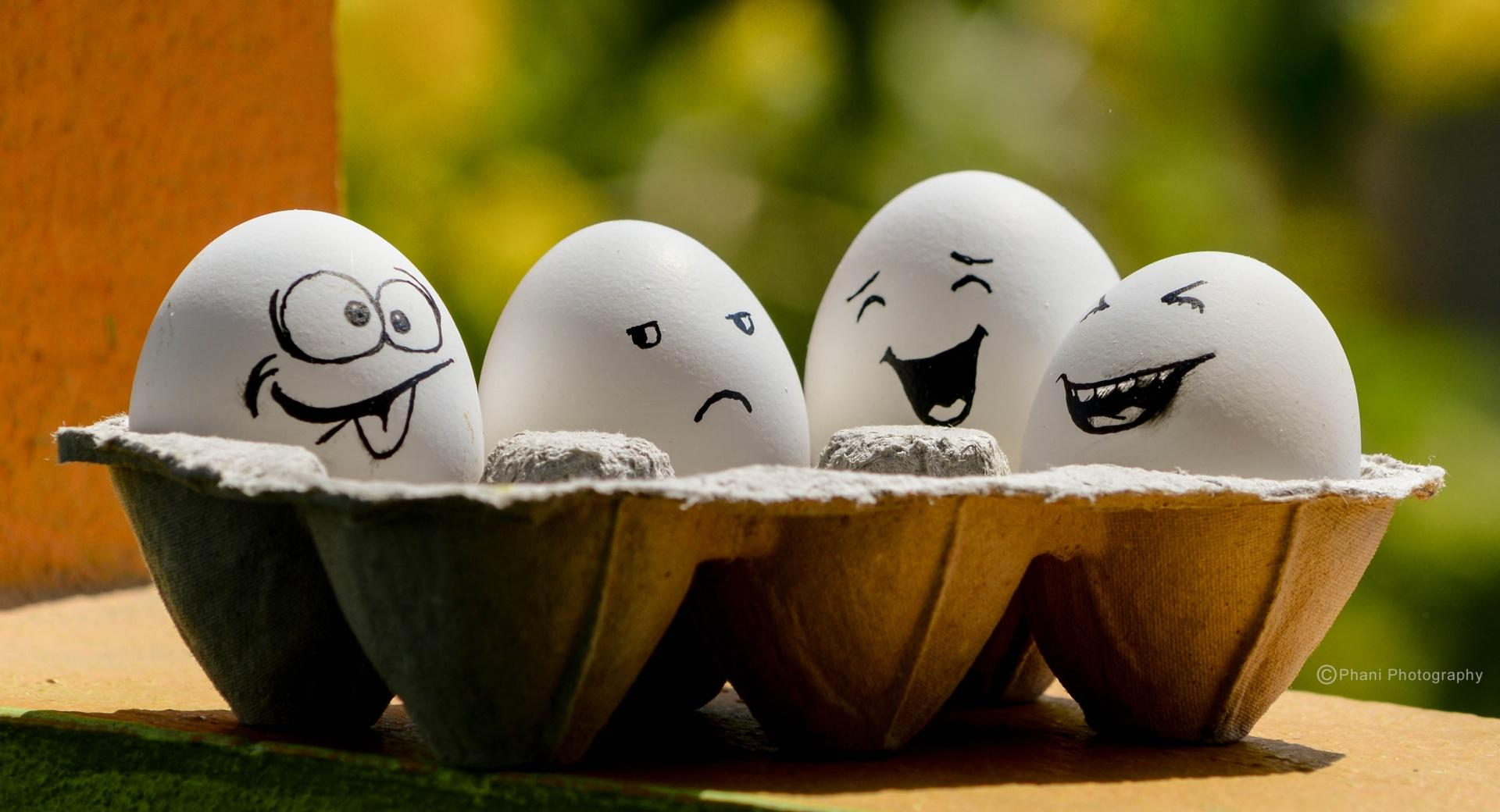 Funny Eggs wallpapers HD quality