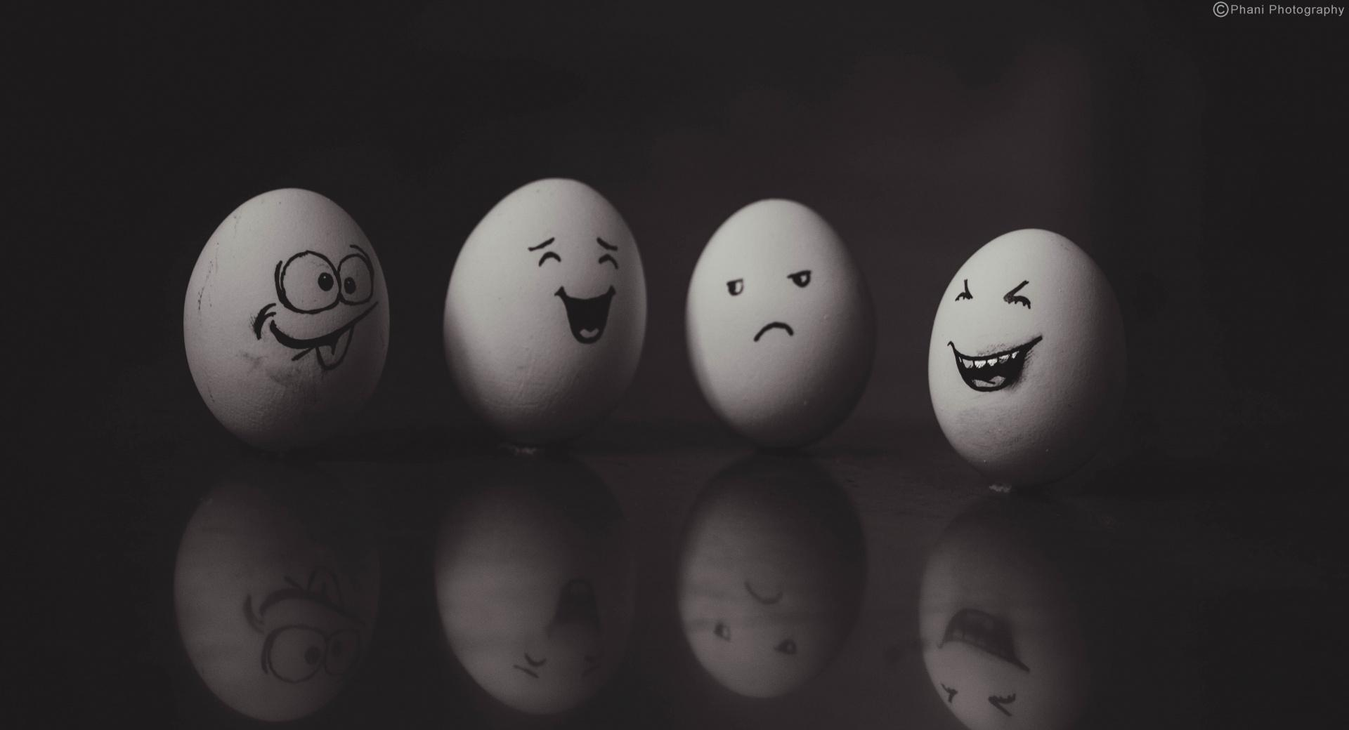 Funny Eggs 2 wallpapers HD quality
