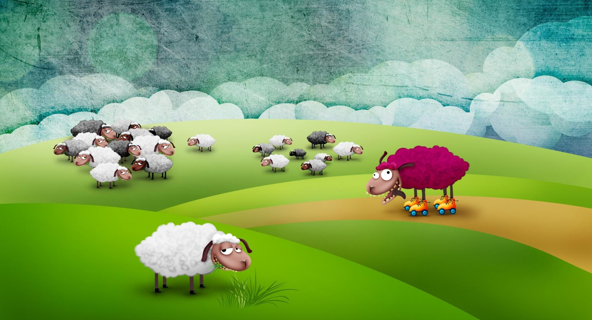 Funny Sheeps wallpapers HD quality