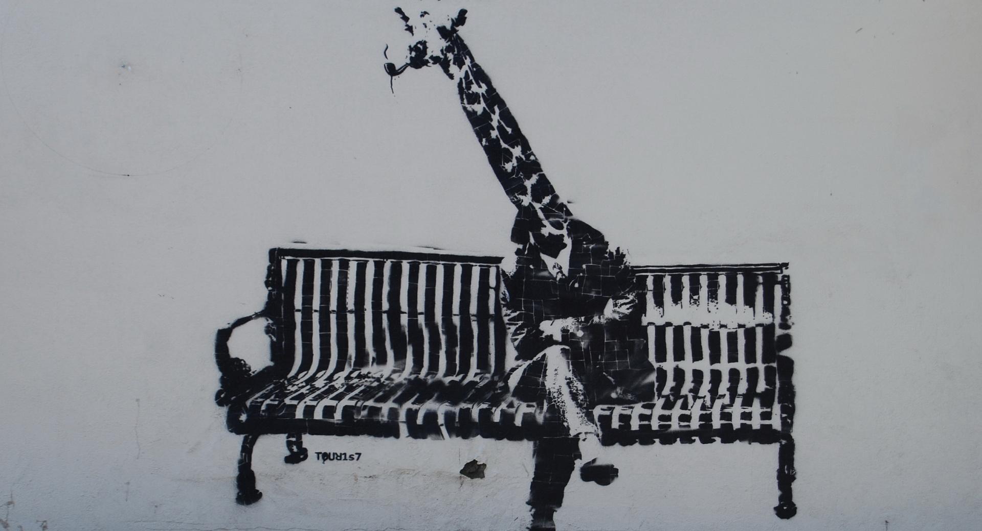 Giraffe Graffiti wallpapers HD quality
