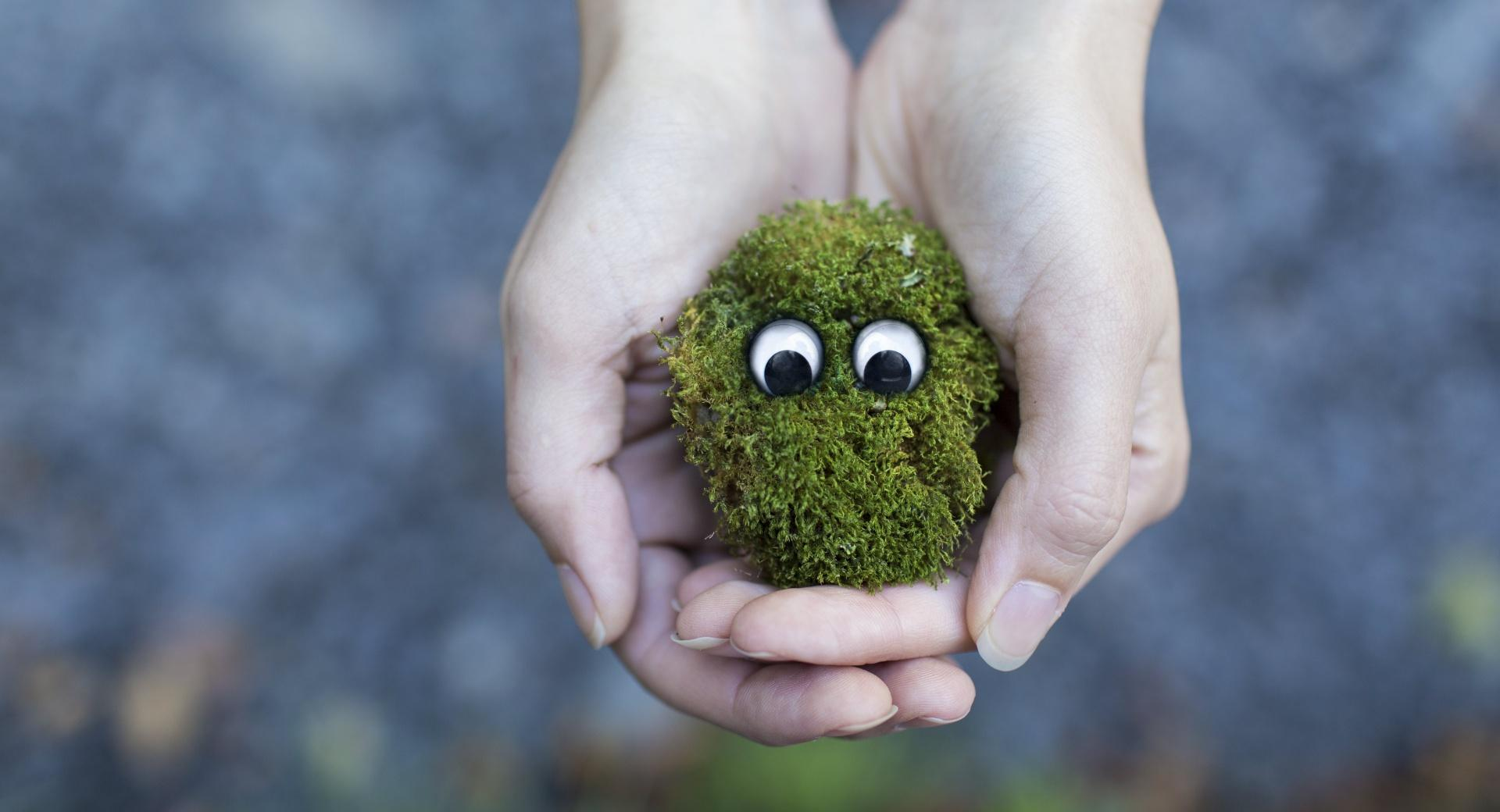 Googly Eyes wallpapers HD quality