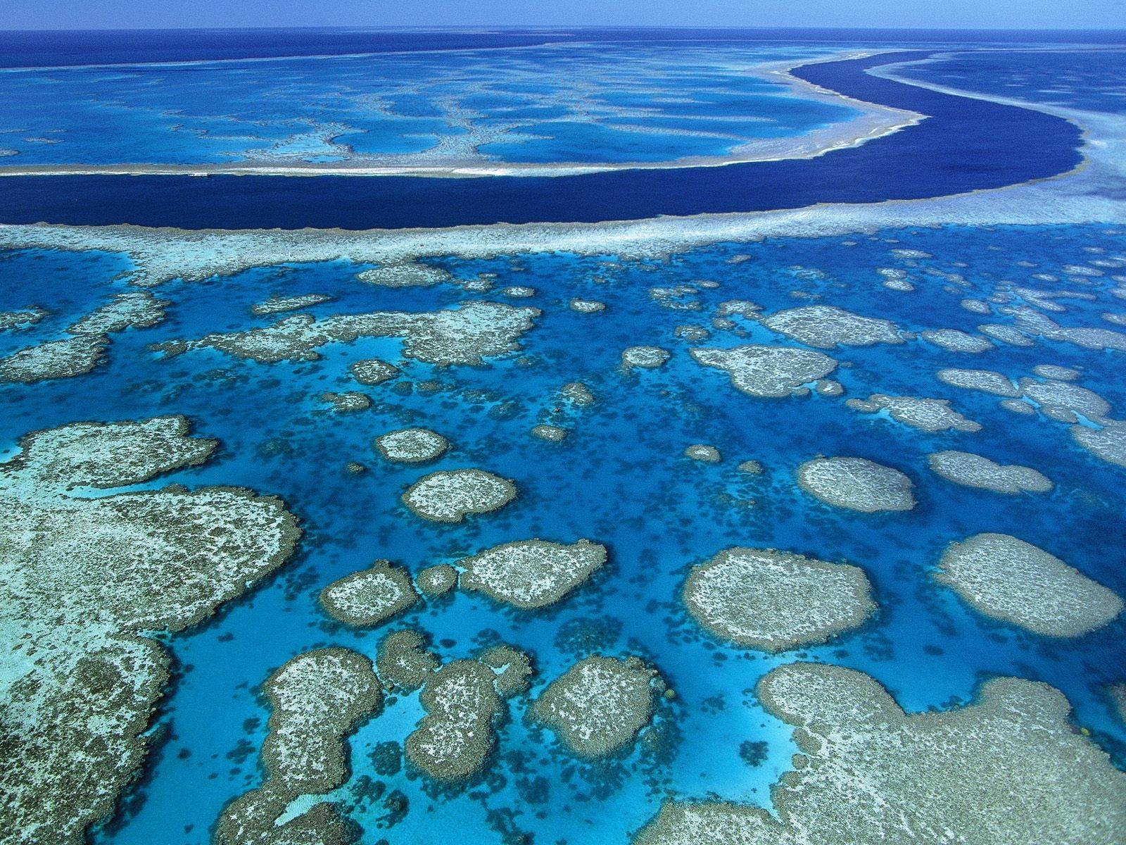 Great Barrier Reef wallpapers HD quality