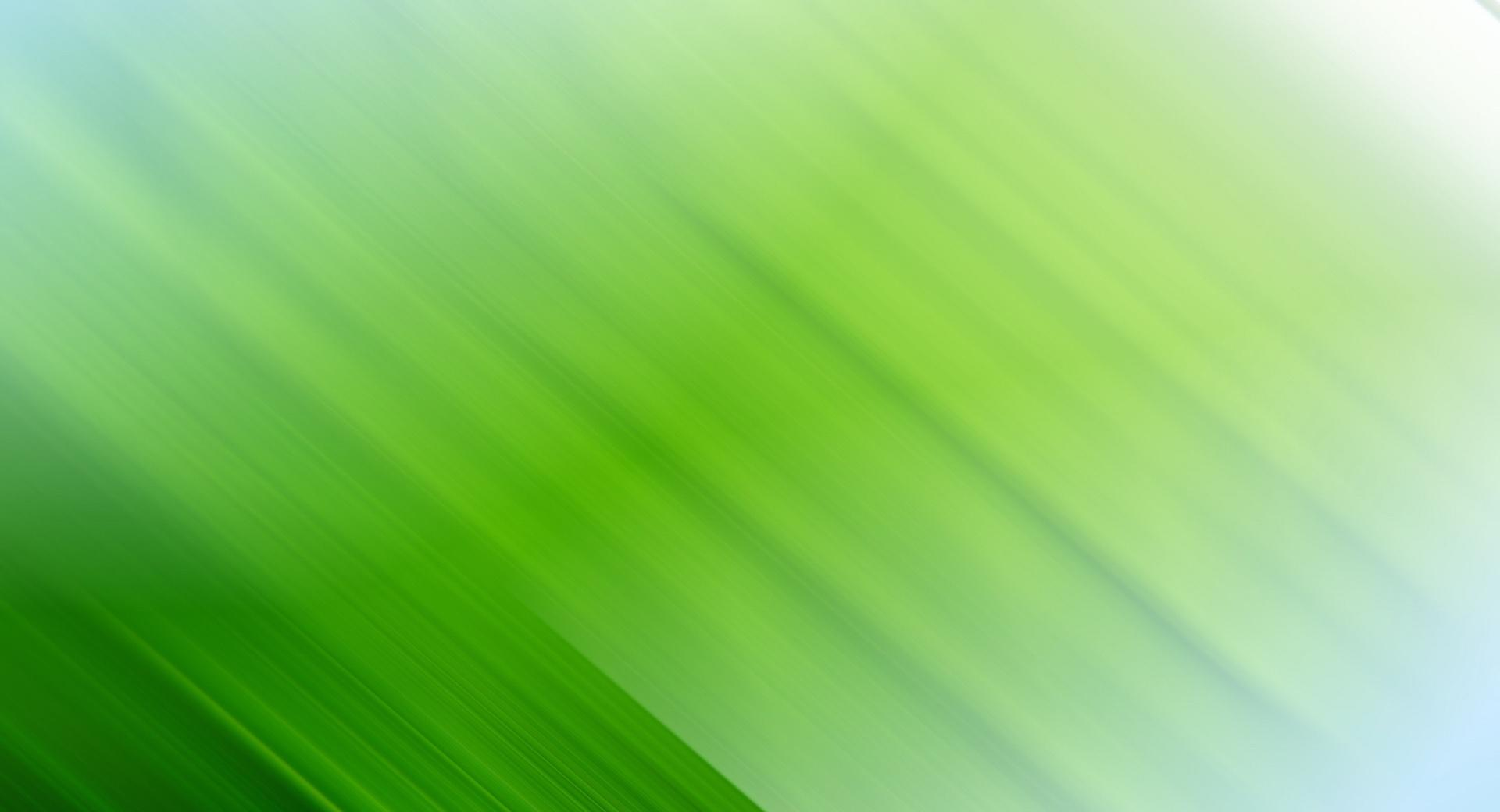 Lime Green wallpapers HD quality