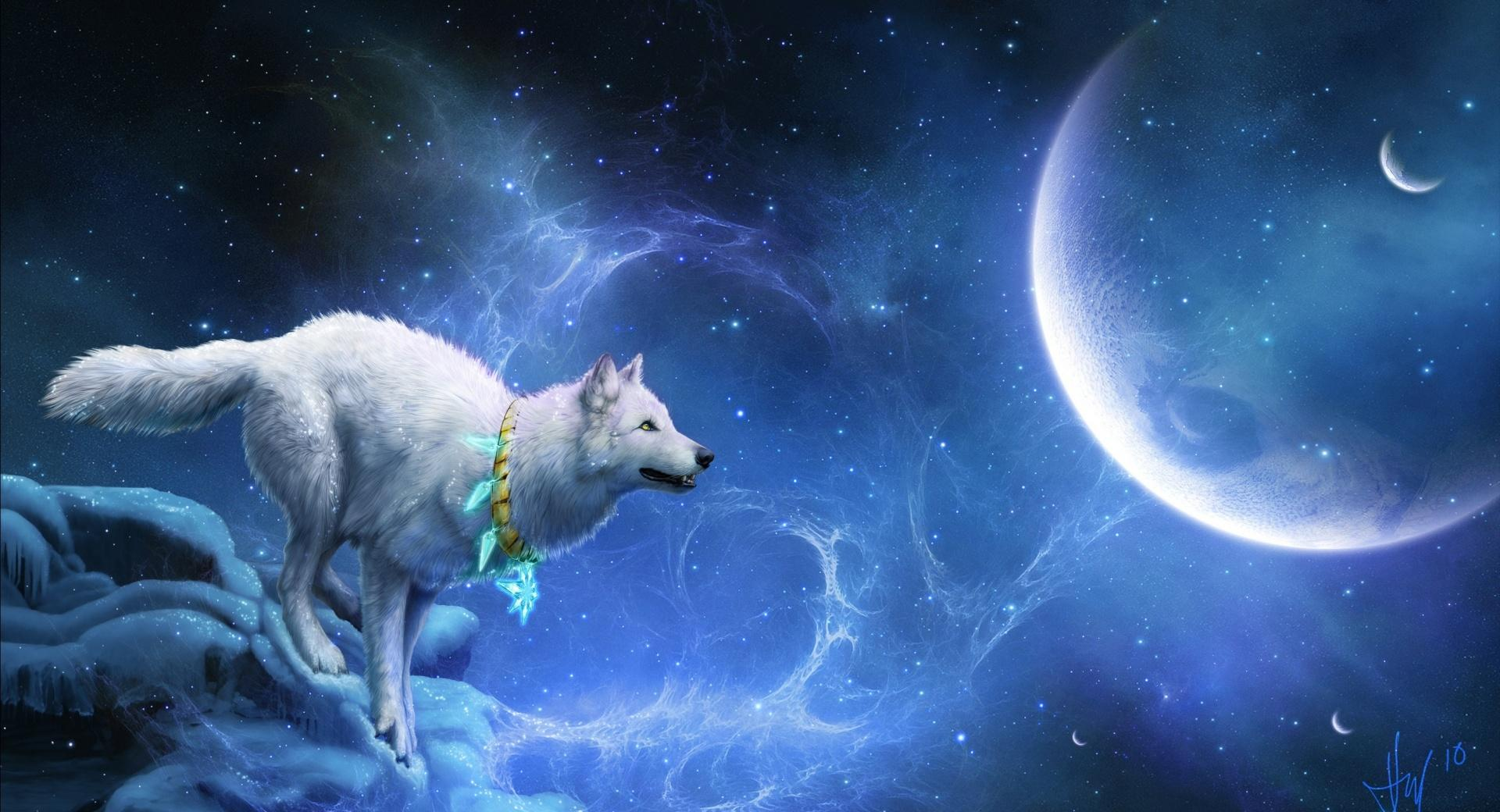 Magic White Wolf wallpapers HD quality