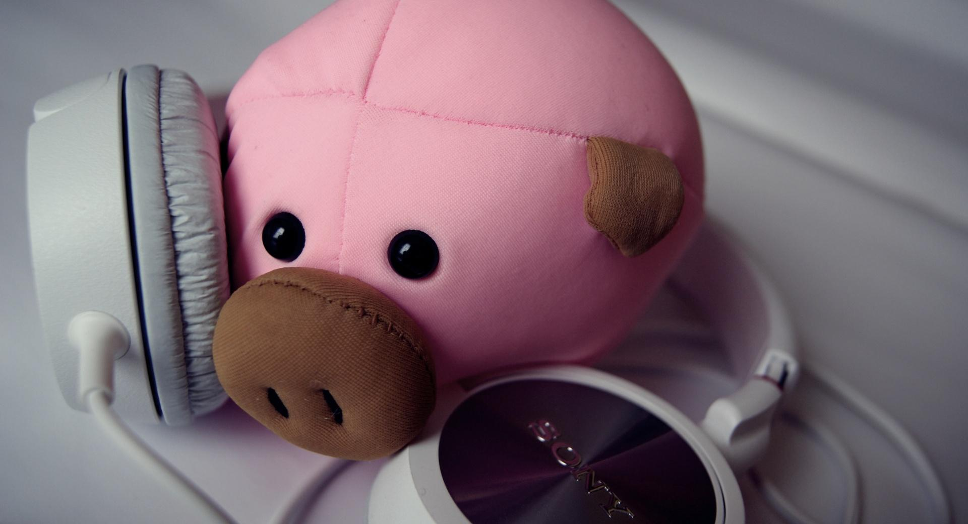 Pig and Headphones wallpapers HD quality