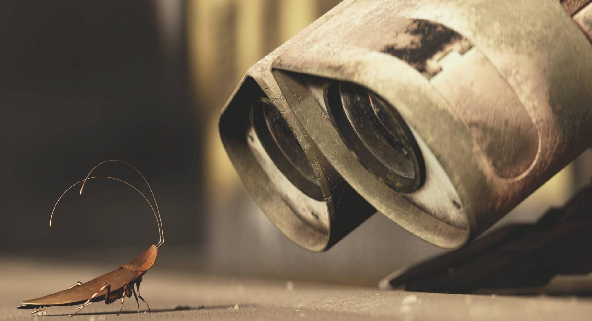 Wall E And A Cricket wallpapers HD quality