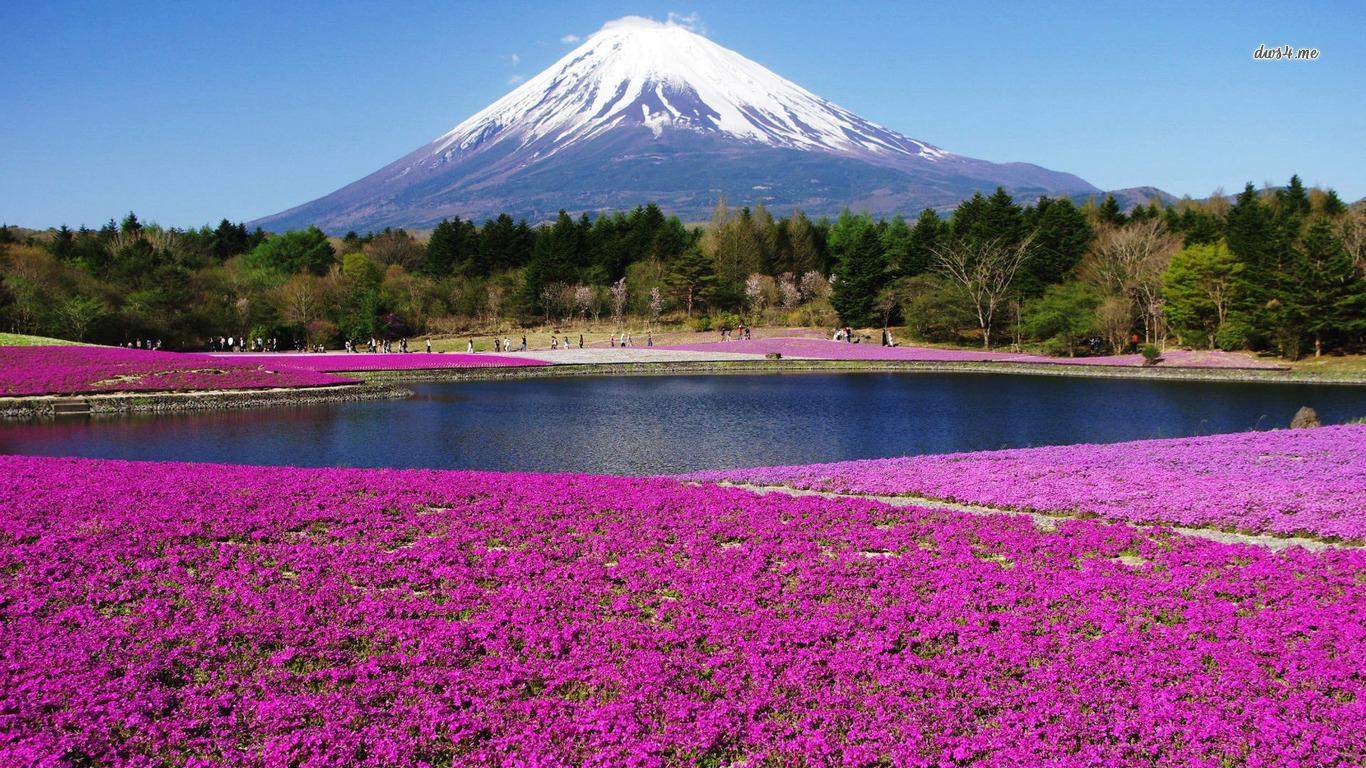 Mount Fuji High Definition Wallpapers