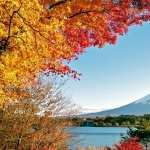 Mount Fuji wallpapers for android
