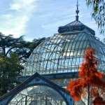 Palacio De Cristal 2017