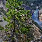 Yellowstone National Park new wallpapers