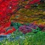 Japanese Garden desktop