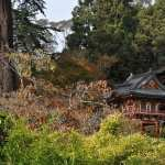 Golden Gate Park free download