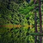 Lake widescreen