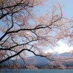 Mount Fuji new wallpapers