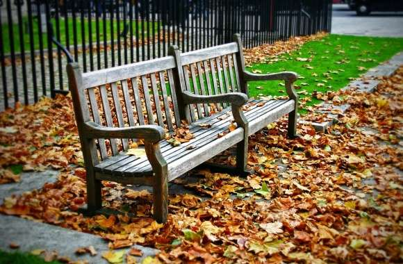 Bench wallpapers hd quality