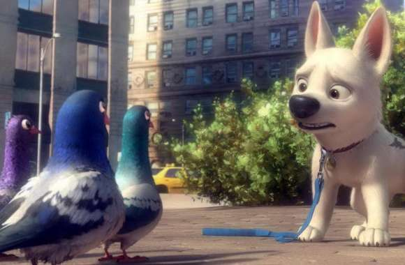 Bolt And Pigeons