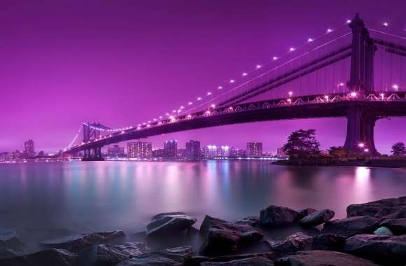 Bridge, Purple Light