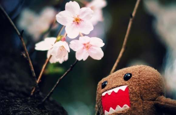 Domo Kun And Tree Blossoms wallpapers hd quality