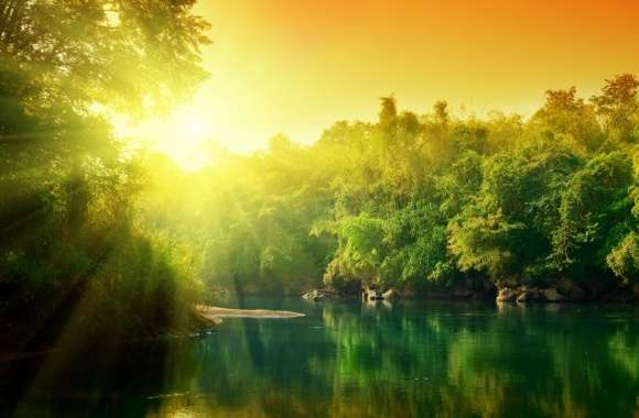 Lush Green Forest River At Sunrise