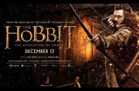 the hobbit the desolation of smaug bilbo baggins wallpaper