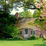 Cottage 2017