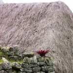 Machu Picchu wallpapers for iphone