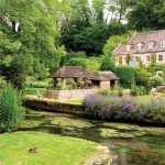 Cottage free