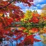 Japanese Garden pics