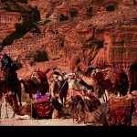 Petra widescreen