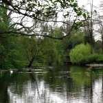 Lake new photos