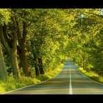 Road free