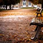 Bench wallpapers hd