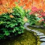 Japanese Garden hd pics