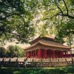 Forbidden City pics
