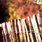 Fence high quality wallpapers
