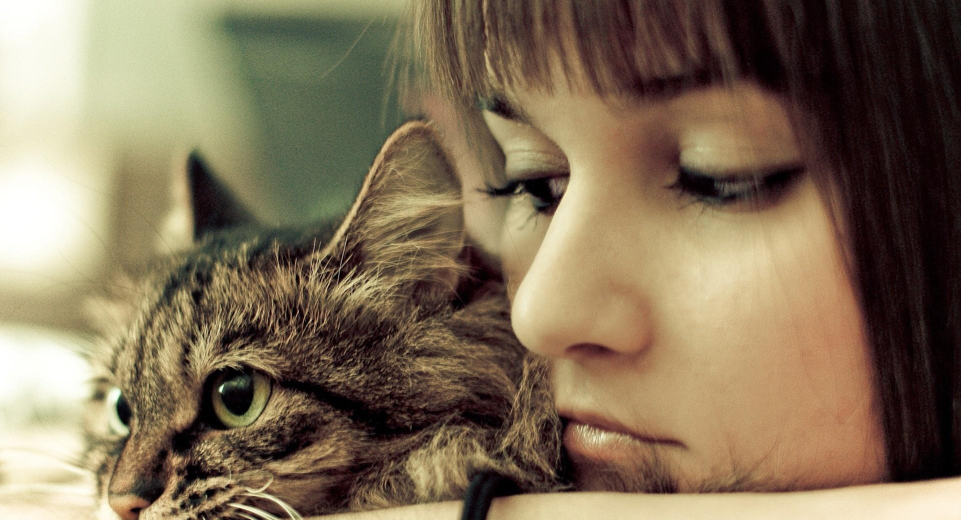 Cat And Girl wallpapers HD quality