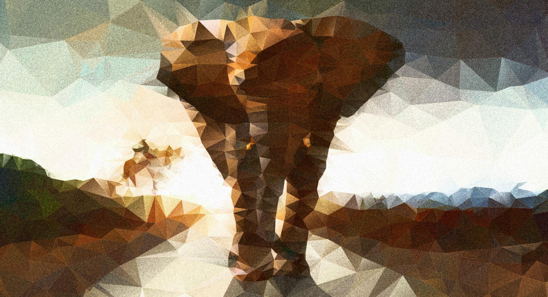 Elephant polygon illustration wallpapers HD quality