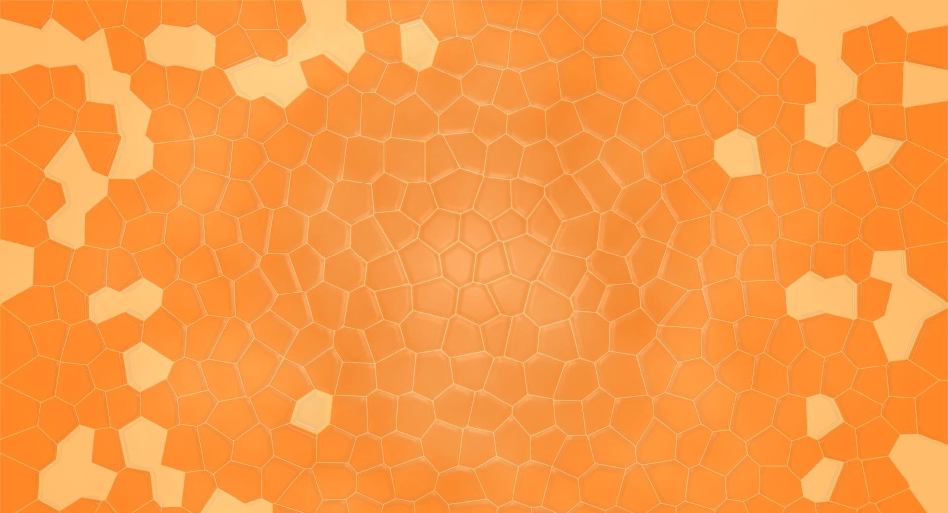 Orange Shell wallpapers HD quality