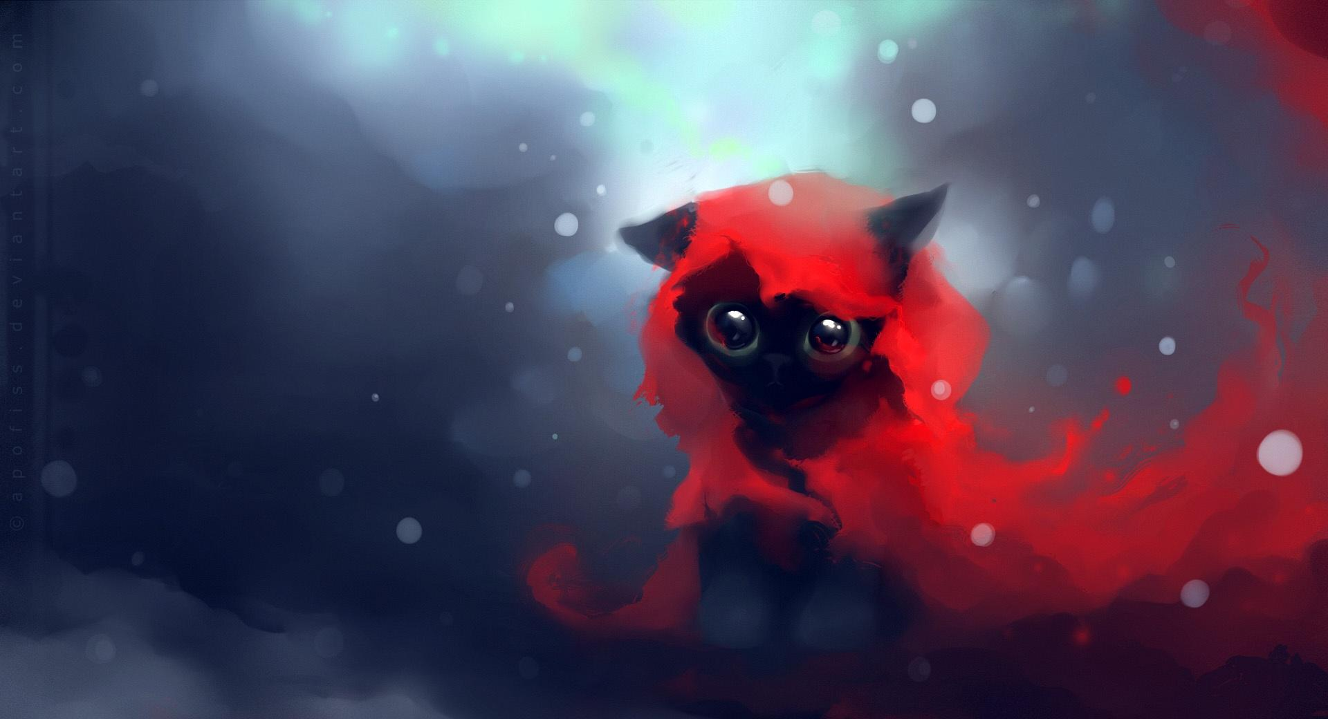 Red Riding Hood Cat wallpapers HD quality