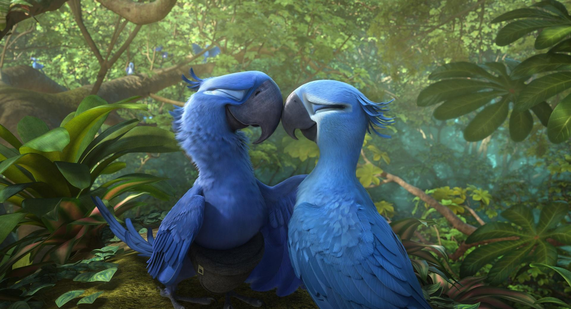Rio 2 Blu and Jewel wallpapers HD quality