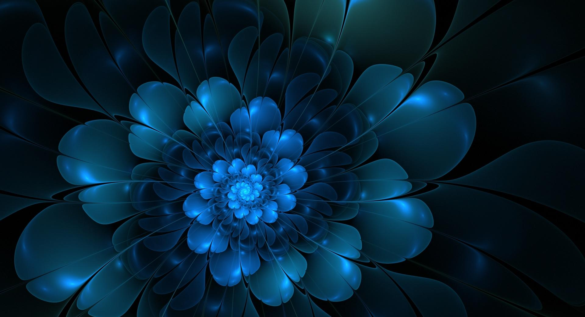 The Blue Flower wallpapers HD quality