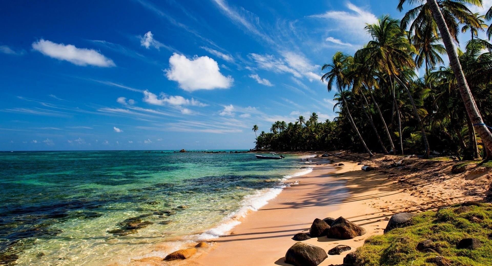 Tropical Beach With Grass wallpapers HD quality