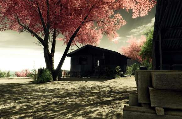 Crysis Screenshots Sakura