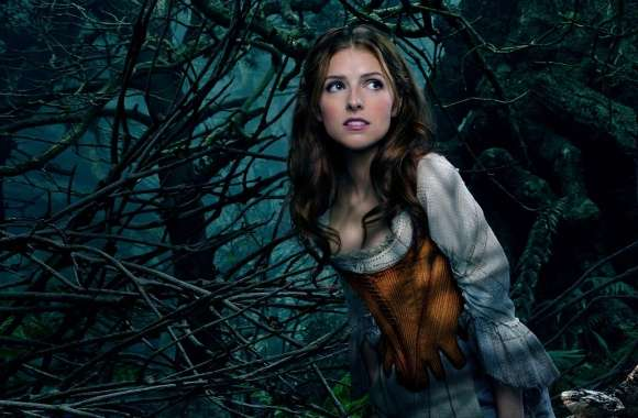 Into the Woods Anna Kendrick as Cinderella