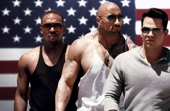 Pain and Gain 2013