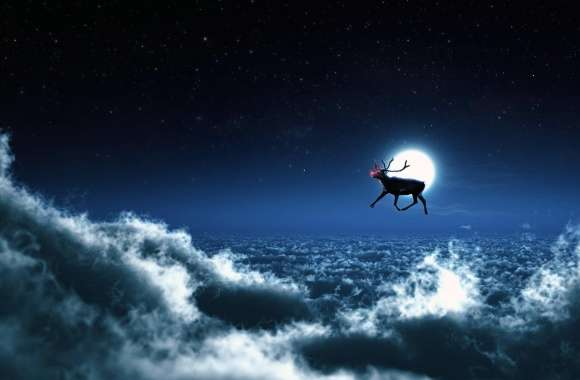 Rudolph Flies Solo