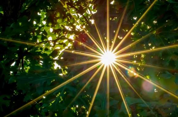 Sunburst wallpapers hd quality