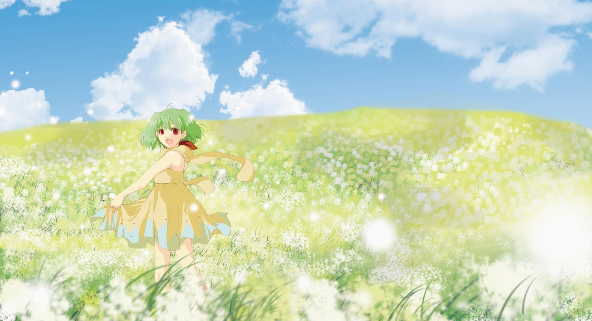 Anime Girl In Flower Field wallpapers HD quality